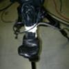 三脚につけたwebカメラ