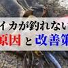 【エギング】釣れない人の5つの原因と改善策!シャクリの下手さは関係なし!
