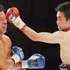 西岡さん夢の初防衛…西岡利晃vs.ヘナロ・ガルシア