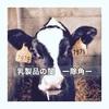 全ての牛には元々、角(ツノ)があります。 ーどんな方法で除角 (Dehorning) されるか知っていますか?ー