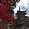 京都へ行ってきました! 世界文化遺産 醍醐寺 伽藍エリア編