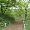 勝俣部長の健康体質作り・・・・高尾山「健康を体感する」(233)