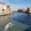 ヴェネツィアの大運河をヴァポレットでぐるりと【2019年ヴェネツィア&ウイーン旅行⑲】