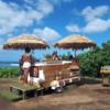 カメハメハハイウェイで立ち寄った「1979 Hawaii」は幻のカフェ。今度はいつ逢えるかな。