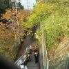 登校の風景:中ノ池方面から