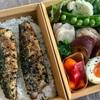 お弁当と牡蠣のドリア