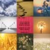 Twitter、アメブロ、Instagram、Facebookに作家「瑠花」さんの8/28の詩をご紹介しました。