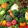 タンパク質は固形物を食べた方がいいのに野菜はサプリでいいの?