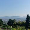 【大和葛城山】サルメあたりを散策。葛城ロープウェイで山上へ。大和三山の眺め