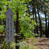 静岡ドライブ 三保の松原