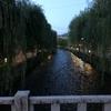 古川町商店街 ビア小町 白川の散歩は京情緒たっぷり