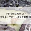 子連れ(2歳)旅行記・伊豆(3)大室山と伊豆シャボテン動物公園