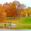 【カナダの紅葉】カストール湖(モンロワイヤル山)