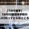 【TAFE留学】TAFE付属の語学学校のELICOSってどんなところ?