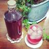 紫蘇仕事~赤じそジュースの作り方~