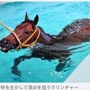 くりんくりんの最強競馬ブログ