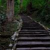 【出羽三山】東北最強のパワースポット羽黒山で2446段を登る