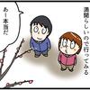 小田原城の梅を見にいく