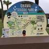 【離島】奄美大島おすすめ体験・グルメをざっくりと紹介します【鹿児島】