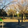 井田公園の遊具がちょっと新しくなってたよ