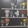 「壁の花」で生きる