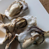 巣ごもりのプチ贅沢|東松島産 生食用の殻付き牡蠣を大人食いしました