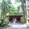 長野県の戸隠神社に行ってきました!龍や鳳凰、神さまに出会える神社。