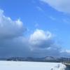 ◆'19/02/02     高館山①…可愛いものたちにワクワクしながら登り始める。