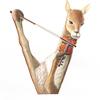 水彩画「Vicuna(Vicugna) / Violinist」