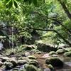 【石垣島2020-2021】石垣島から行ける、離島いろいろ。西表島編
