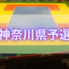 【雀躍なる闘士】ドッジボール全国大会神奈川県予選