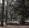 代々木公園オフ