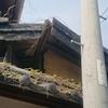 壊れた塀の屋根と桜の花