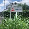 清瀬市の一角にある所沢市(下安松新中里住宅自治会)