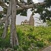インド最大の心霊スポット、謎の中世都市バンガル遺跡