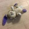 【ペットトーク】犬のぬいぐるみを直して使う【壊されない犬の玩具も】