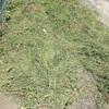 草刈り、堆肥化