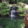 ナラ入沢渓流釣りキャンプ場レポート