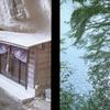 三島湖の隠し祠と奥米(おくごめ)隧道