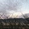 島根県雲南市の朝