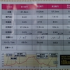 『第6回飛騨高山ウルトラマラソン(100㎞)』93.3㎞で終わる!