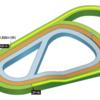 第454R 阪神競馬 阪神牝馬S(GⅢ) 参考データ