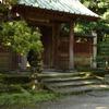 鎌倉~報国寺~