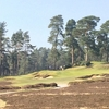 イギリスゴルフ #118|Swinley Forest Golf Club|ハリー・コルトの「最も悪くない」コース