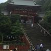 【鎌倉】【鶴岡八幡宮】リスがたくさんいる!赤い塗りの江戸建築が鮮やかな鶴岡八幡宮へ