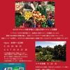 3月24日・31日南青山のサロンKINDさんのマルシェにて湘南ゴールド果実販売!