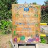 食べて、ヨガして、農業体験して。遊べるファーム、Caoba Farms(カオバ・ファームス)