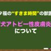 """【犬アトピー性皮膚炎】~""""すきま時間""""の獣医学~"""