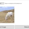 【WPF】物体検出のためのPythonスクリプトをC#から実行する