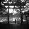 5月のフィルム写真ー1−